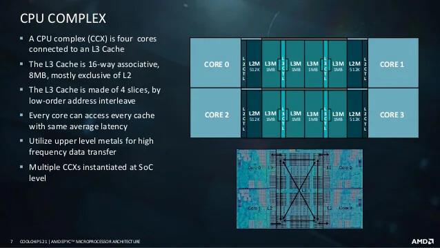 AMD-Zen3-orga